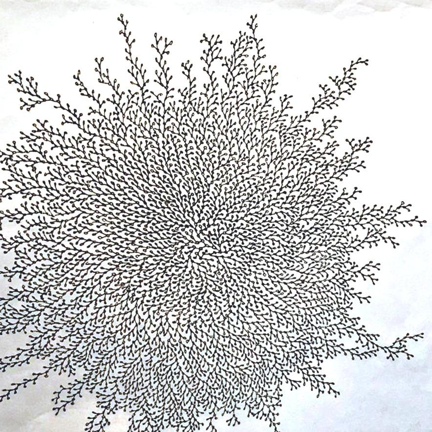 #113 «SELBSTORGANISIERENDE MUSTER» – Ausstellung von CORNELIA BÜCHEL, Kunstschaffende